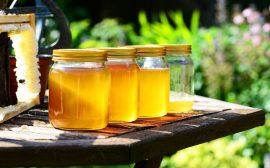 Pourquoi un pot de miel pour votre maison